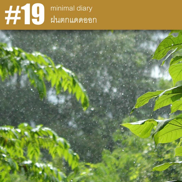 diary-0019-ฝนตกแดดออก