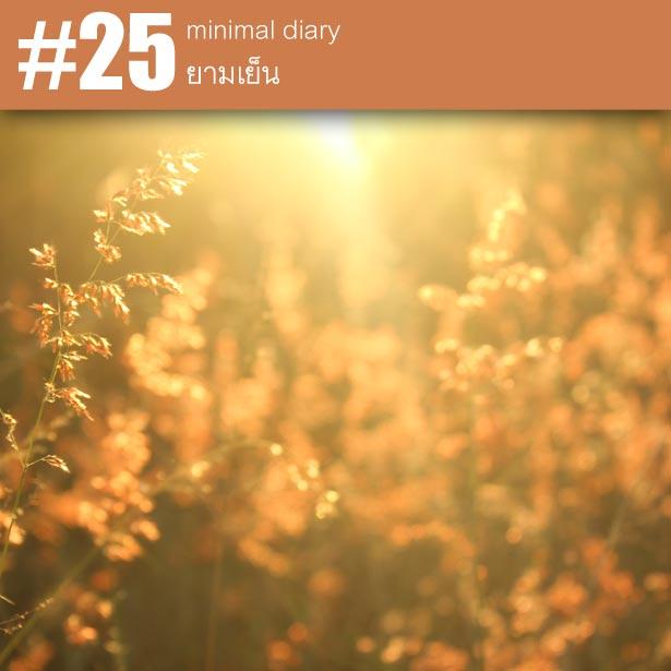 diary-0025-ยามเย็น
