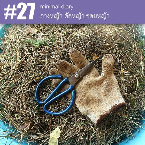 diary-0027-ตัดหญ้า