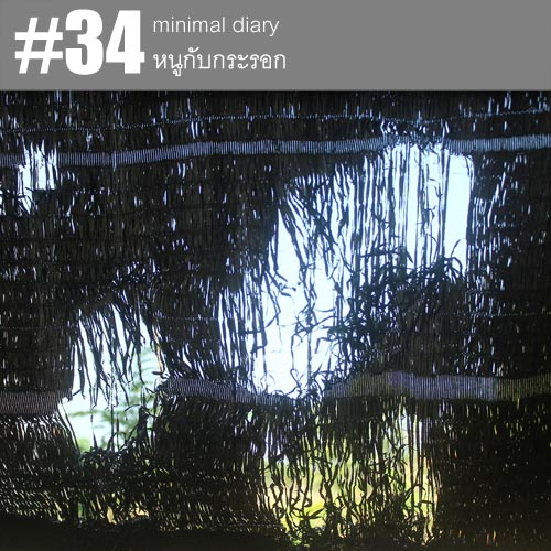 diary-0034-หนูกับกระรอก