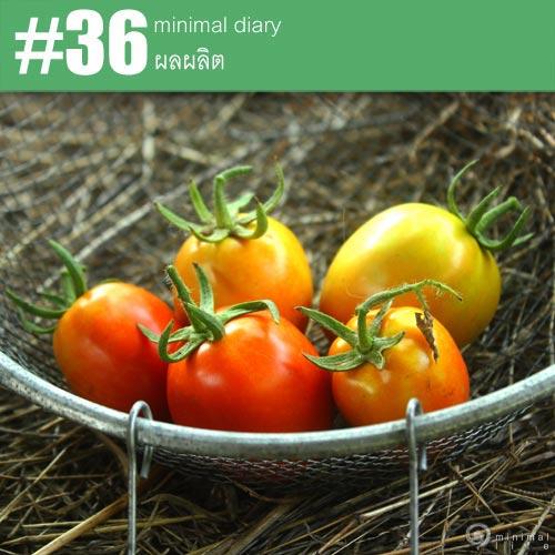 diary-0036-ผลผลิต